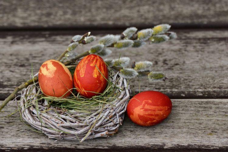 Ostereier in Nest auf Tisch