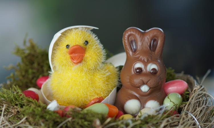 Ostern rückt in großen Schritten näher - Die Freude auf Osternester steigt