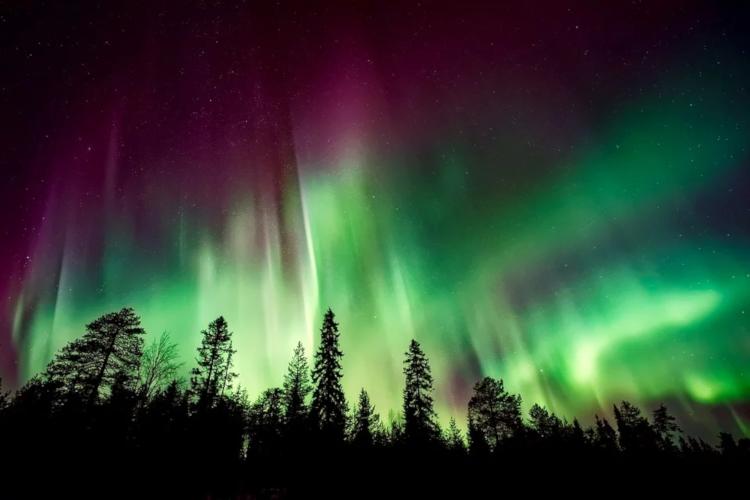 Aurora Borealis oder Nordlichter. Ein typisches Phänomen der Polarnacht.
