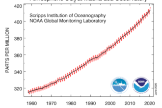 Der Verlauf der CO2-Konzentration seit dem Jahr 1958 (rot) und nach Entfernung der saisonalen Schwankung (schwarz). Quelle: NOAA