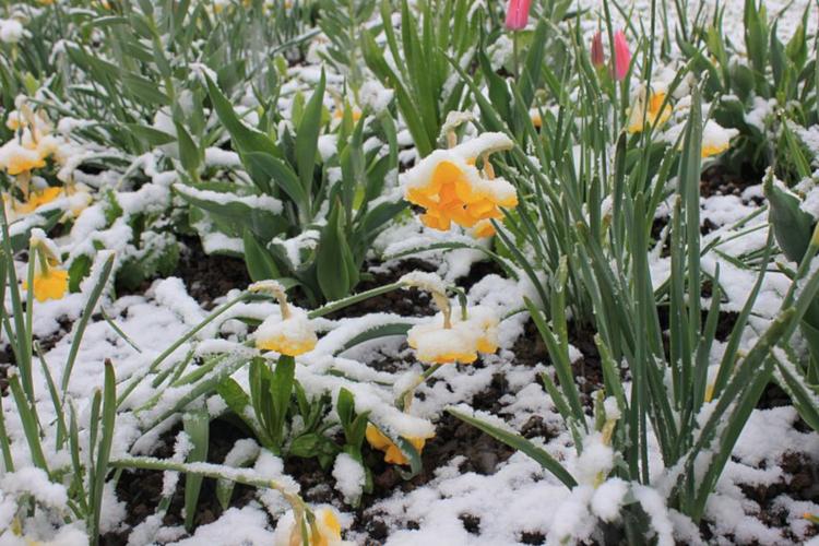 Wien Wetter März