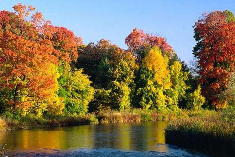 Herbst; Foto: Peter Rufi, Public Domain