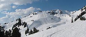 Schneeberichte aus den Skigebieten